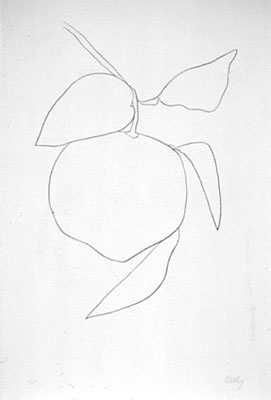 Ellsworth Kelly, Tangerine (Mandarine).
